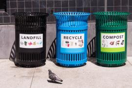 Difference between Composting and Recycling Waste
